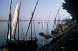 Egypt, sailboats at the shore