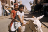 Egypt, two young girls sitting on a donkey