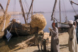 Egypt, unloading wheat at the dock