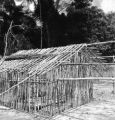 Orientale province (Democratic Republic of the Congo), frame of house made of small poles