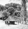 Orientale province (Democratic Republic of the Congo), village hut