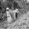 Democratic Republic of the Congo, women with basket walking along edge of forest