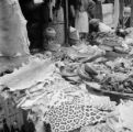 Nigeria, animal skins and bones displayed at Ibadan market