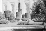 Egypt, sculpted shrubs in front of unidentified building