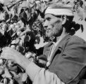 Morocco, man harvesting apricots in Marakesh