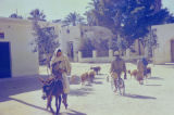 Libya, village scene with one man riding donkey and another riding bicycle