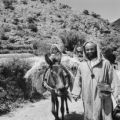 Morocco, man traveling with child on donkey in Ourika valley in Marrakech province