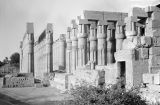 Egypt, columns of Sun Court of Amenhotep III at Luxor Temple in ancient Thebes