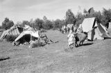 Morocco, tents at Berber nomad camp