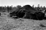 Morocco, tent at Berber nomad camp