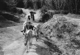 Nigeria, man with donkey traveling uphill on trail in Kano