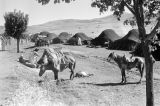 Morocco, view of Berber nomad camp in Atlas Mountains