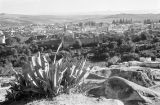 Morocco, view from hill of old fortification walls and city of Fez