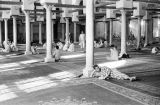 Egypt, men relaxing inside mosque