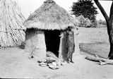 Nigeria, woman standing next to prepared meal and hut