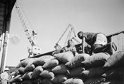 Mozambique, dock workers loading sacks of copra