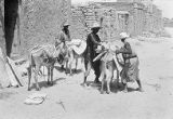 Mali, men loading slabs of salt onto donkeys