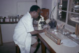 Africa, scientist in lab