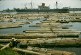 Côte d'Ivoire, lumber for export floating in Abidjan harbor