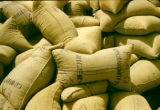 Nigeria, bagged peanuts for export