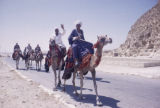 Egypt, camel caravan on way to pyramids in Giza