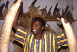 Africa, man posing with ivory animal tusks