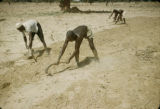Egypt, workers tilling field with hand tools
