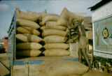 Nigeria, laborer stacking bags of palm kernels on truck