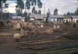 Ethiopia, people gathered among logs in village
