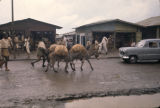 Ethiopia, donkeys carrying goods through village street
