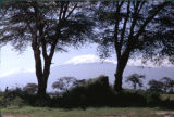 Tanzania, view of Mount Kilimanjaro