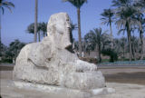 Egypt, Alabaster Sphinx at ancient city of Memphis