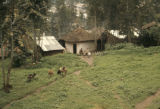 Ethiopia, people and animals at small farmstead