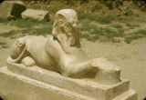 Egypt, sphinx at Karnak Temple Complex in ancient Thebes