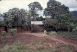 Democratic Republic of the Congo, man walking across path at farm