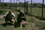 Zambia, Harrison Forman and man petting lion at Kafue National Park