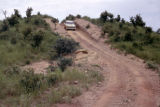 Uganda, car traveling on road in Murchison Falls National Park