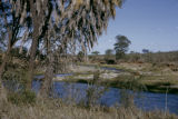 Zambia, river and landscape at Kafue National Park