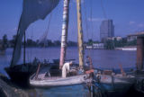 Cairo (Egypt), sailboats docked at the Nile river