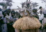 Democratic Republic of the Congo, 'demon' being attached by shaman in performance