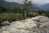 Uganda, mountain stream flowing past by village
