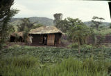 Democratic Republic of the Congo, people at farm