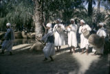 Tunisia, musicians and dancers performing in Nefta desert oasis