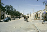 Tunisia, pack animals carrying goods in Tozeur street
