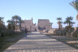Luxor (Egypt), Avenue of the Sphinx