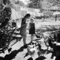 Austria, children in Oberzeiring watching chickens in yard