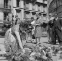 France, people watching woman feeding birds on Champs-Élysées in Paris