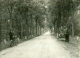 Poland, highway lined with trees, wagon on dirt part of road, man with bicycle