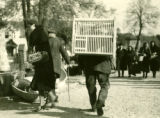 Poland, man carrying wooden poultry coop at Grodzick market