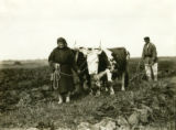 Ukraine, man and women plowing with oxen